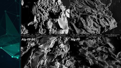 Bioaktív üvegkompozitok alkalmazása csontszövet regenerálására