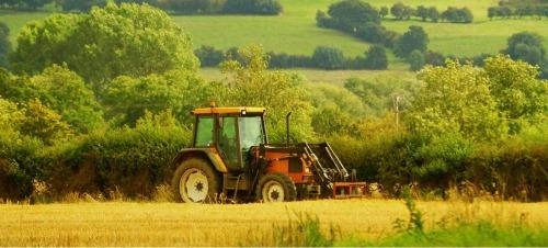 Szakmai konferenciát szervez a KAB Agrártudományi szakbizottsága Csíkszeredában