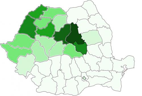 Megjelent: A magyar nyelv Romániában (Erdélyben)