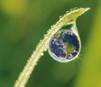 Hegyvidéki mezőgazdaság és a fenntartható fejlődés. Tudományos konferencia a Magyar Tudomány íœnnepe alkalmából