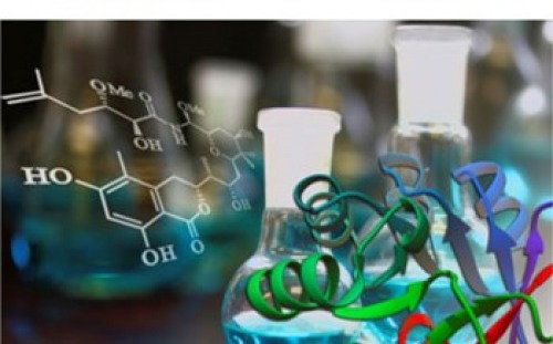 Biocatalytic approaches in natural product synthesis